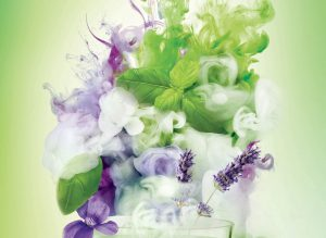 a candle surrounded by lavender, flower, basil leaves and fragrance smoke