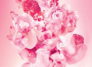 Sozio depuis 1758 - Perfume your word